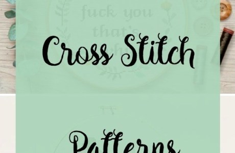 Saucy Cross-Stitch Patterns: Not for the Sensitive