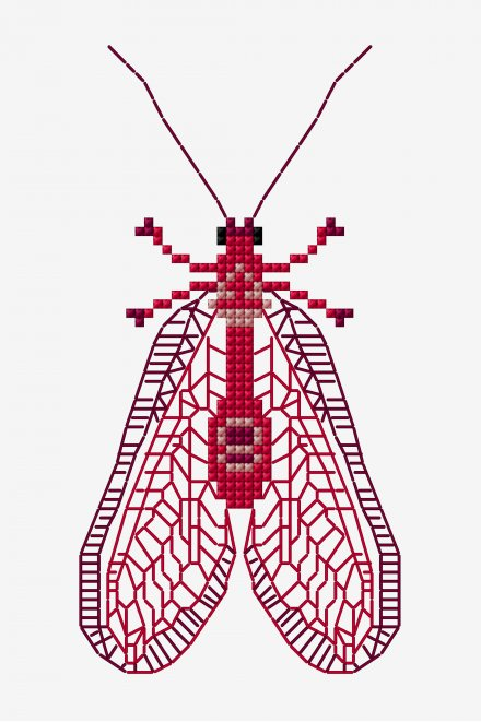 lacewing cross stitch embroidery