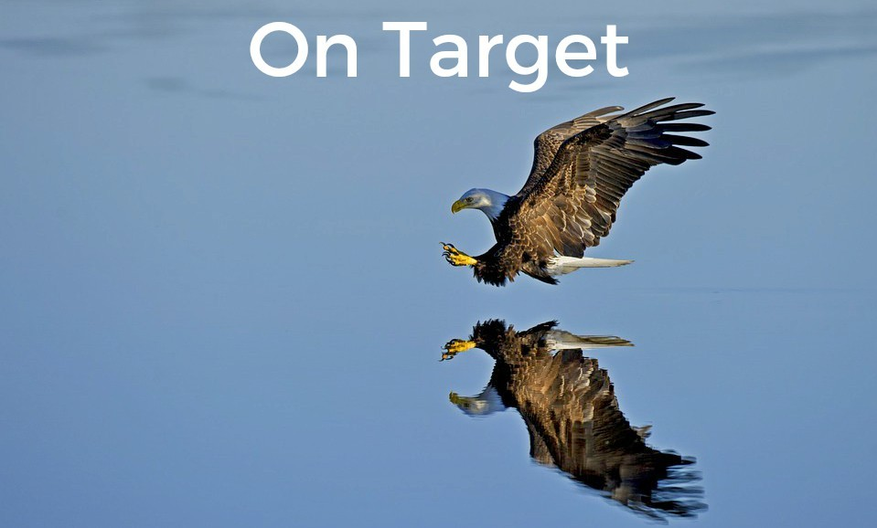 Nonprofits Score With Target Marketing
