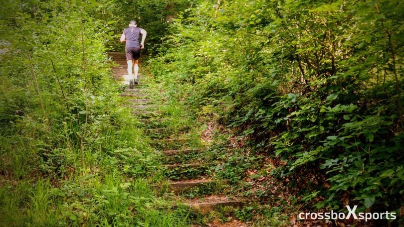 treppenstufen-im-wald-trimmdichpfad-läufer