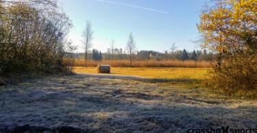 Bild von herbstlichem Feld