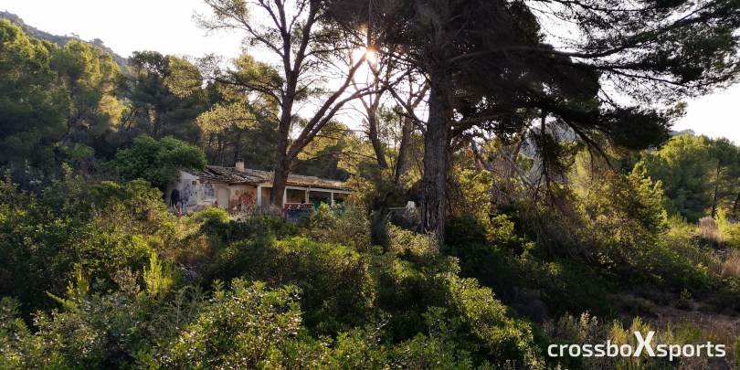 verfallenes Haus im Kiefernwald