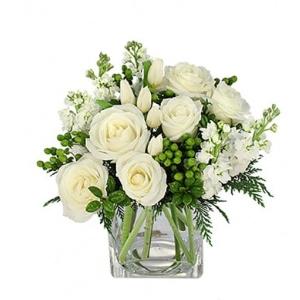 white roses christmas flowers