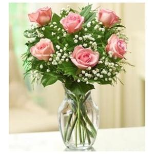 pink roses half dozen