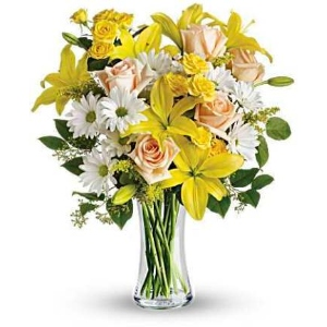 yellow lily white daisy rose flowers