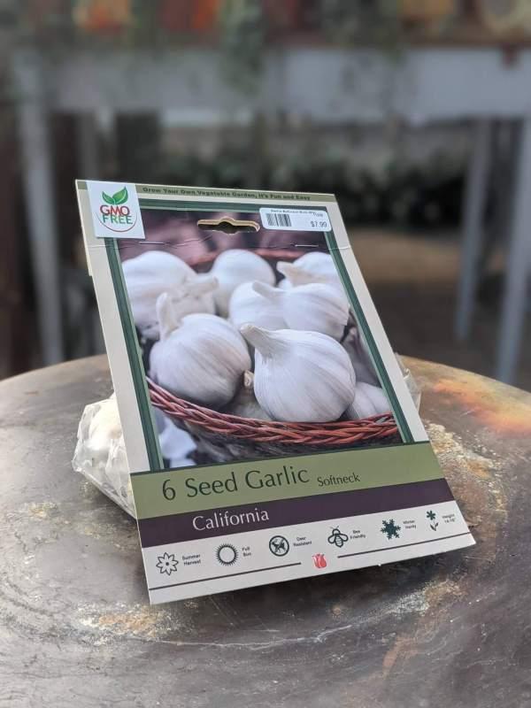 bag of garlic bulbs