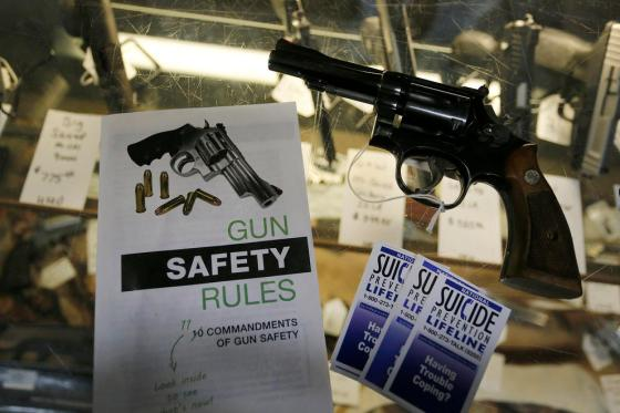 a gun and gun safety literature