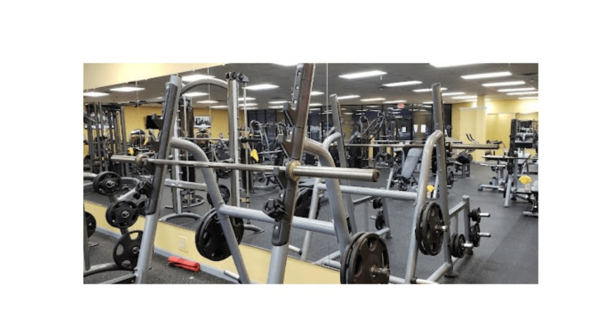 Different Types Of Gym Equipments