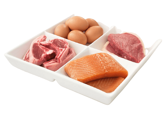 foods help in adding protein for muscle gain