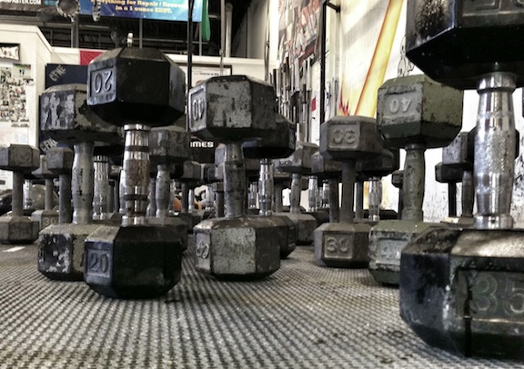 "Welcome to the Dumbbell forest. Or as Axel Rose would say, ""Welcome to the Jungle!"""
