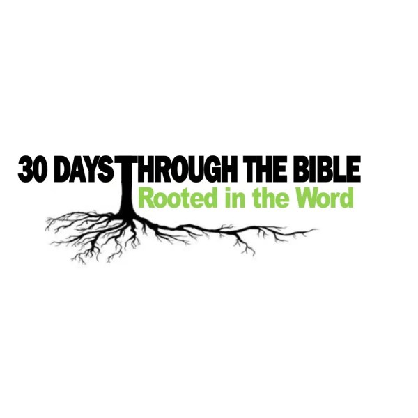 rooted in the bible collinsville il church
