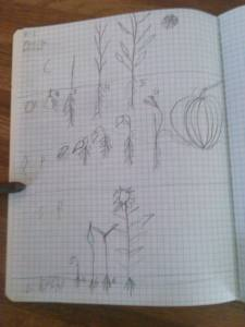 2014-09-02 Jonathan's Science Journal