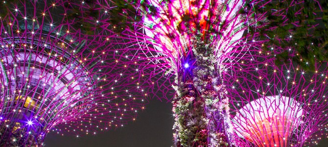 Singapore Dreams