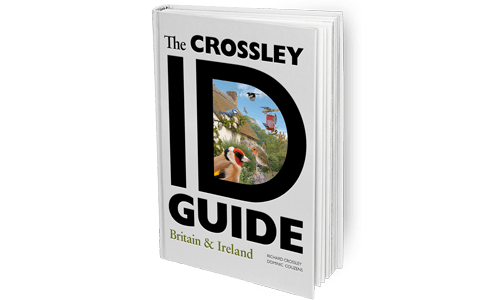 The-Crossley-ID-Guide_Britain_and_Ireland_Featured