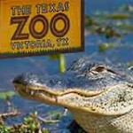 Texas Zoo located in Victoria Texas is close to Crossroads Inn & Suites