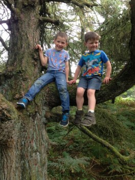 Exploring the woods at Sutton Bank with Logan and Stanley