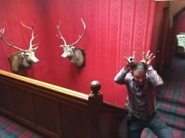 Mick blending in at the Braemar Lodge