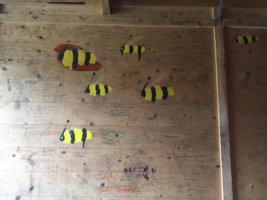 Manchester bees we beelieve!