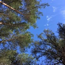 Blue skies at the Linn of Dee