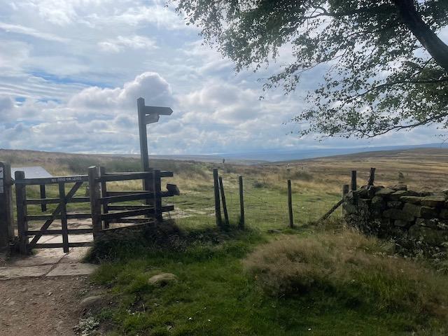 Hanging Stone Leap Race 2021 - Codhill