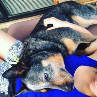 Cuddles with my poochy, Rex <3