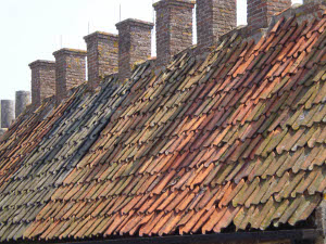 Photo of roofs and chimneys