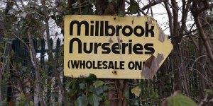 Plant Nursery Millbrook Treblers Road Crowborough