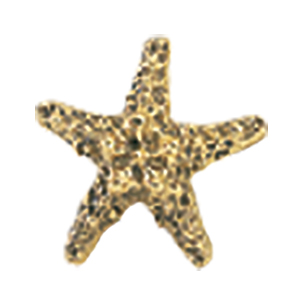 Crowder Designs Decorative Drapery Bracket Collection | Small Starfish