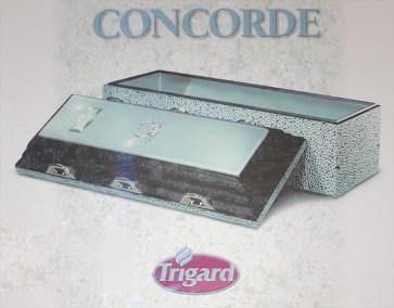 vault_concorde