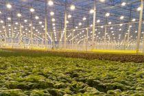 Innovation agro-alimentaire et technologie