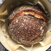 No Knead Beginner Sourdough
