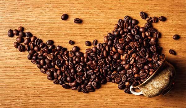 Barista Basics - Beans and Blends - New Zealand