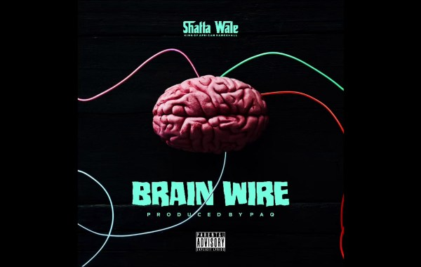 Shatta Wale – Brain Wire (Freestyle) lyrics