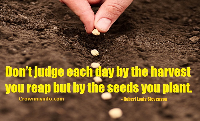 by the seeds you plant