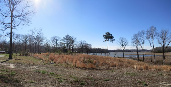 LYN_Cabin Panorama 03
