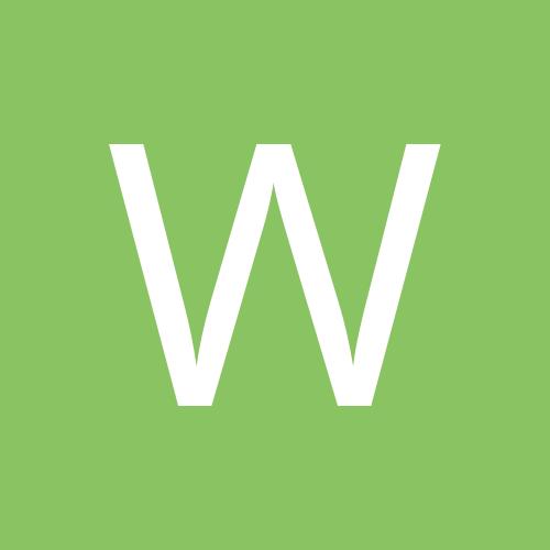 wellington gonçalves