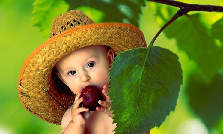 KID Summer 2002875  340
