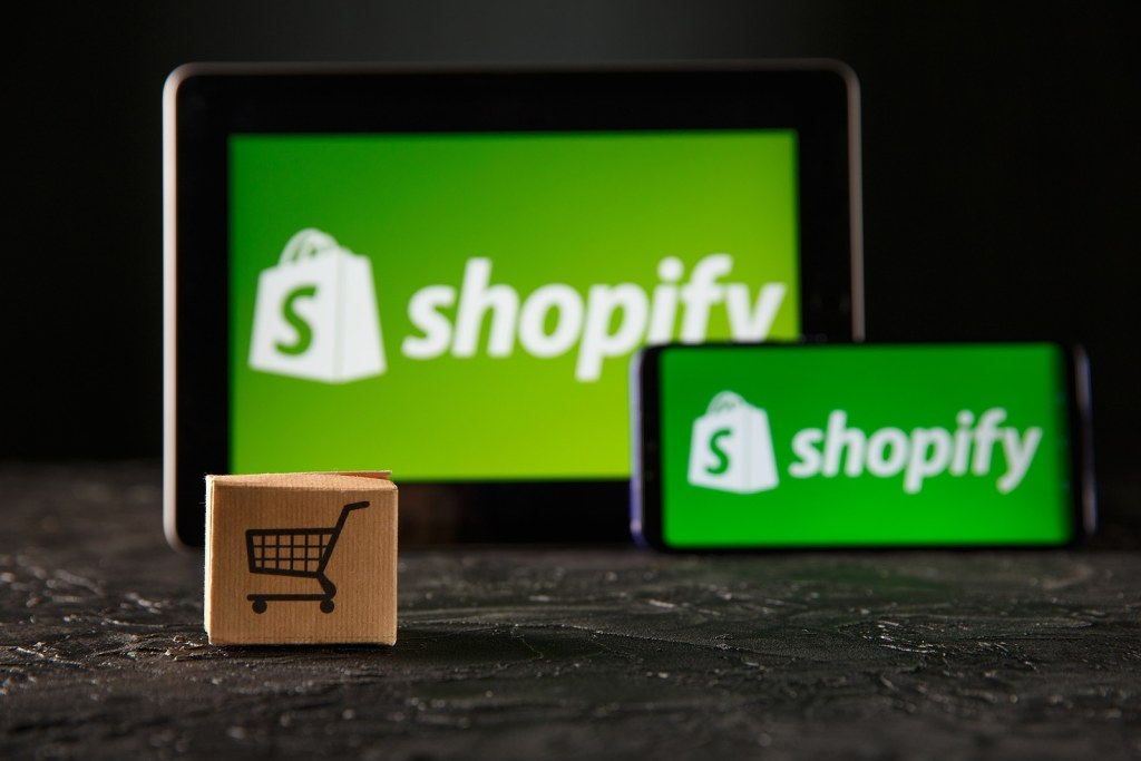 Profitable Shopify Store