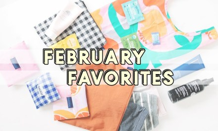 FEBRUARY Favorites | Things I'm loving Monthly Favorite Product Reviews | Miss Louie