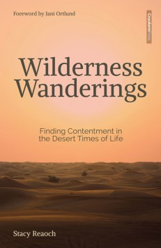 WILDERNESS WANDERINGS: Finding Contentment in the Desert Times of Life, by Stacy Reaoch