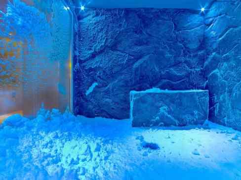 The snow room