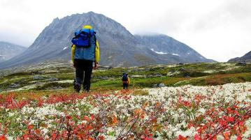 Backpacking Outdoors