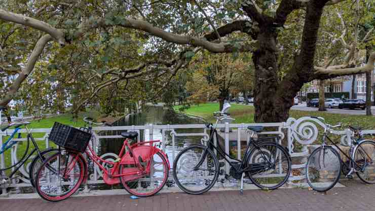 Bikes in Rotterdam The Netherlands