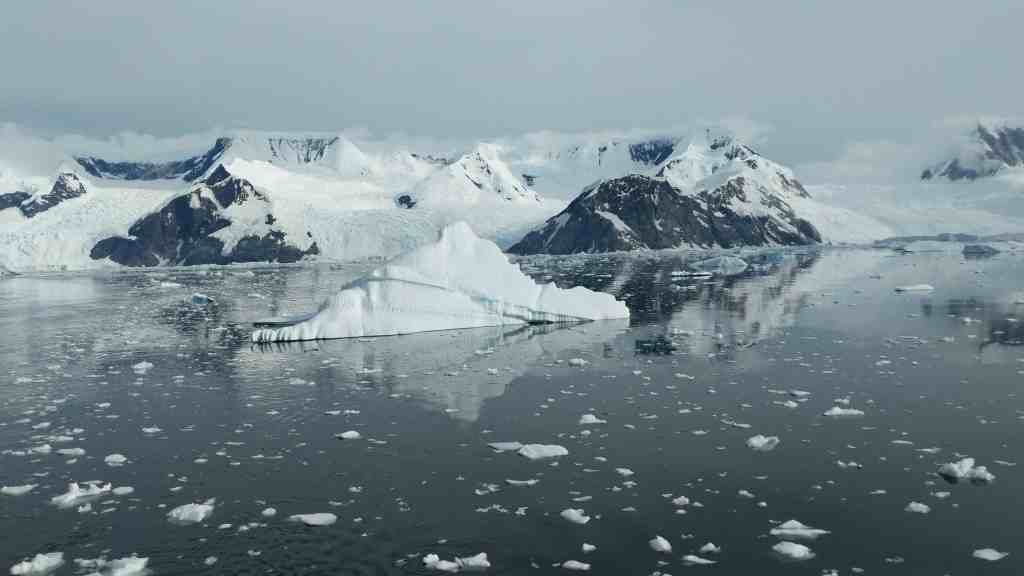 5 Reasons to Take an Expedition Cruise to Antarctica | 1