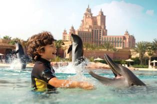 atlantis-dolphins