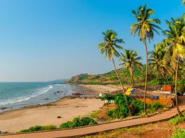 india's cruise industry was seeing rampant growth prior to the pandemic, with destinations like goa especially in demand