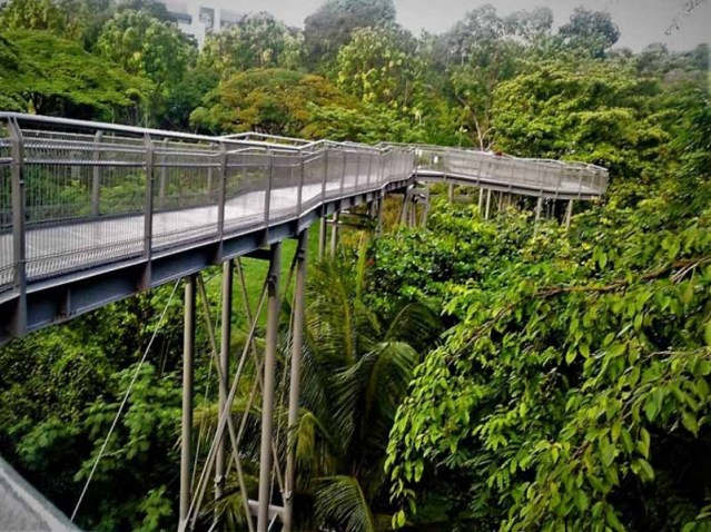 southern ridges singapore