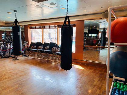 pulse gym aboard norwegian jade