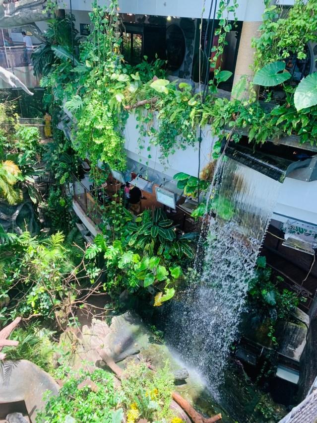 greenplanet waterfall