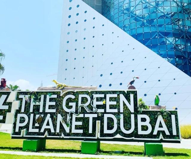 thegreenplanet entrance